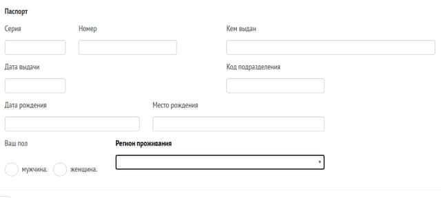 Форма заполнения паспортных данных в Домашние деньги при оформлении займа