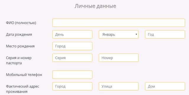 Форма оформления заявки на займ на сайте Финтерра